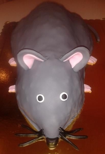 My name is Mouse...Just Mouse!