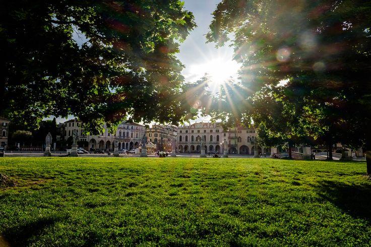 https://flic.kr/p/GHwWqb | Green Grass | In the park of Gardini dell'Arena in Padua just near Cappella degli Scrovegni.
