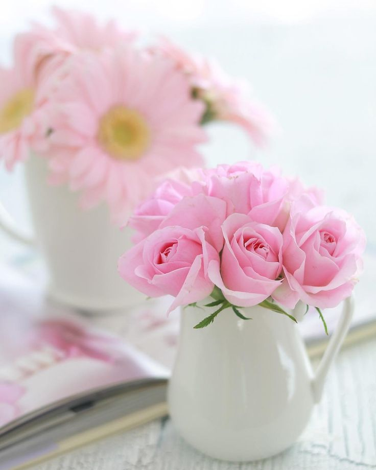 картинка нежные розы с добрым утром расскажем вам десяти