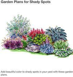 Ideas para manchas de plantas de sombra