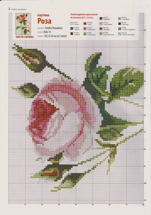 Gallery.ru / Фото #43 - розы разные - irisha-ira