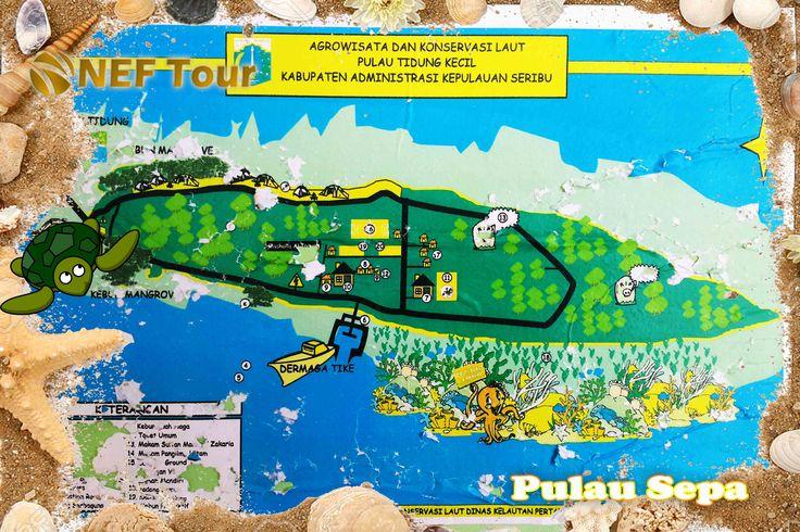 Paket Wisata Pulau Tidung Murah, NEFTOUR