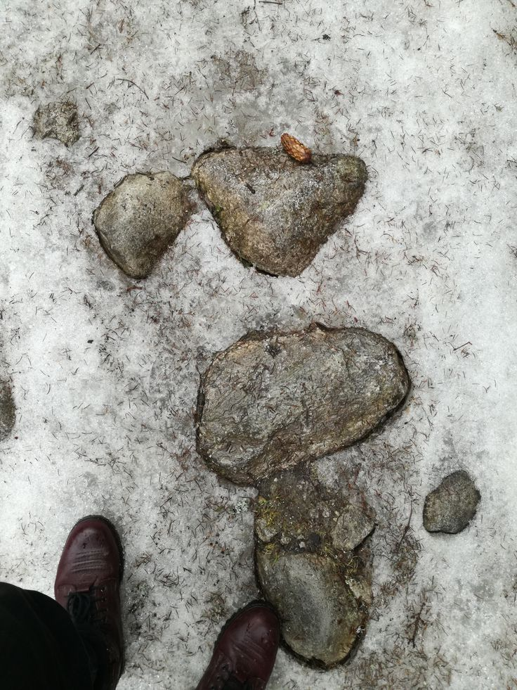 Lonely stones in the middle of nature