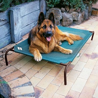 The super tough mesh bed is a strong, durable knitted fabric suitable for indoor and outdoor use. Five year fabric warranty against UV degradation. Outdoor dog cot in attractive hunter green bed with