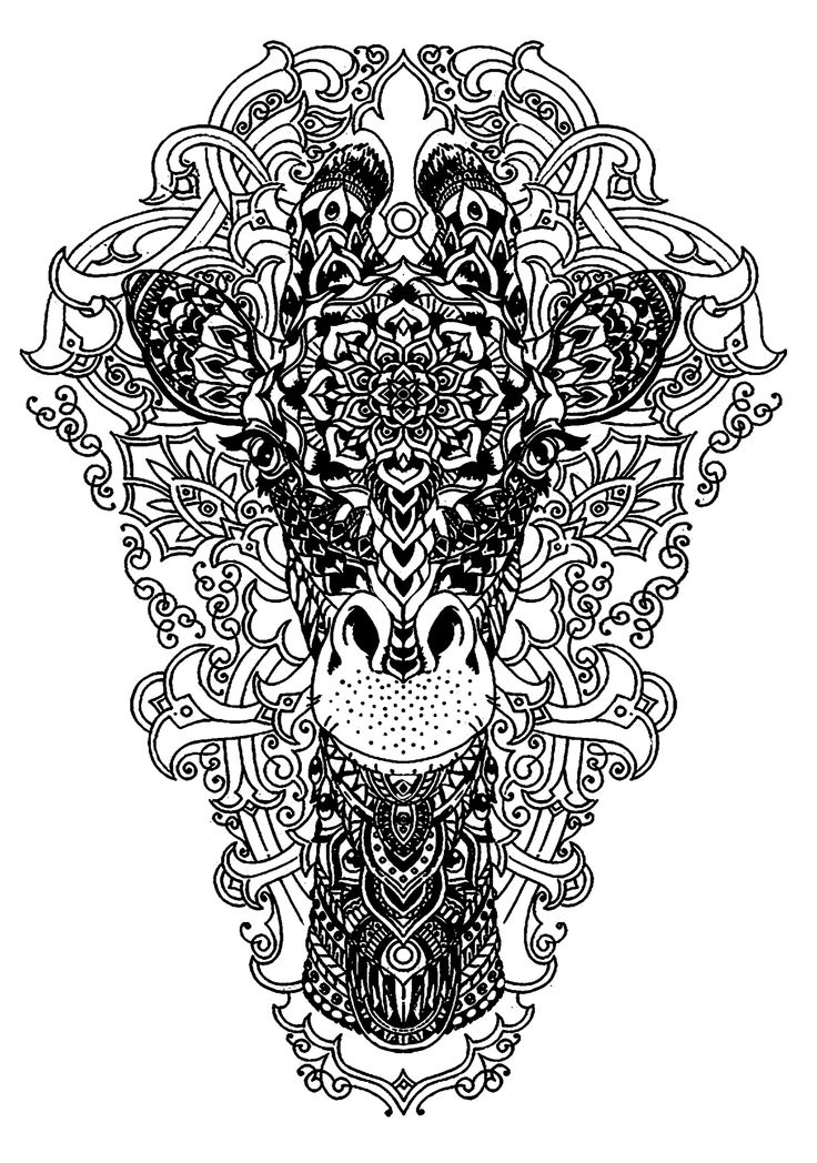 246 best coloring pages images on Pinterest Coloring book, Adult - best of complex elephant coloring pages