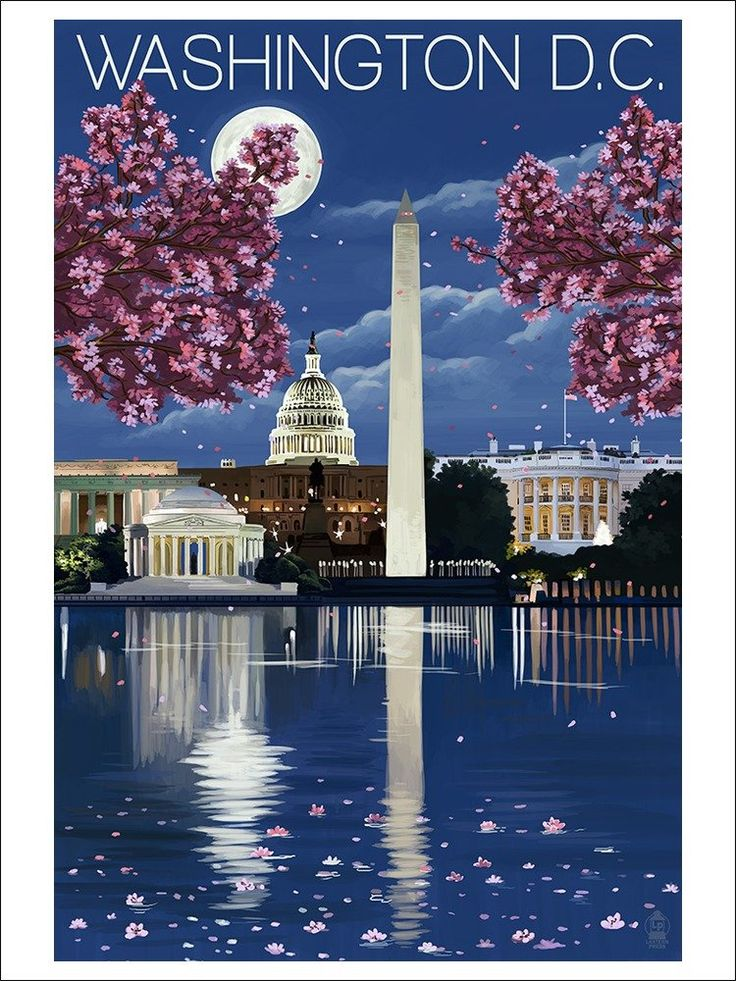 Amazon.com: Washington, DC - Night Scene (12x18 Art Print Wall Decor): Posters & Prints