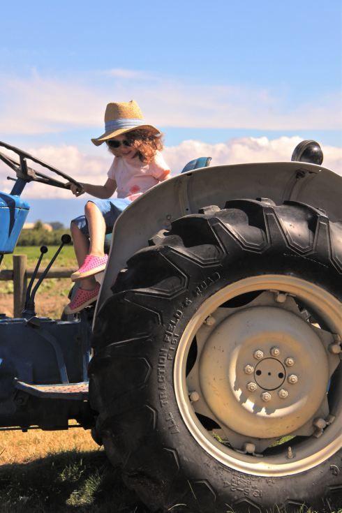 Little Farmer.