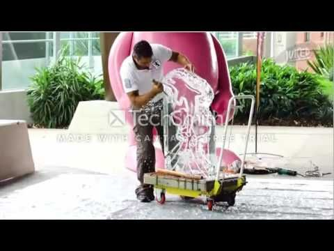 Juiced TV segment - Angel Ice Sculptures at the Lady Cilentro Children's...