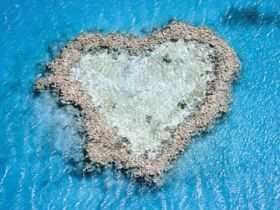 Heart Reef has naturally formed in the shape of a heart. It is part of the Hardy Reef section of the Great Barrier Reef off the Whitsundays. It is best seen with a fly over in a seaplane.  Get more info on The Whitsundays here: http://www.queenslandholidays.com.au/destinations/whitsundays/whitsundays_home.cfm?cmpid=1996