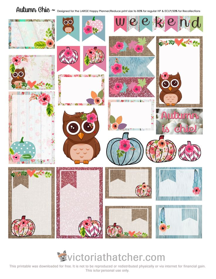 Free Printable Autumn Chic Planner Stickers from Victoria Thatcher