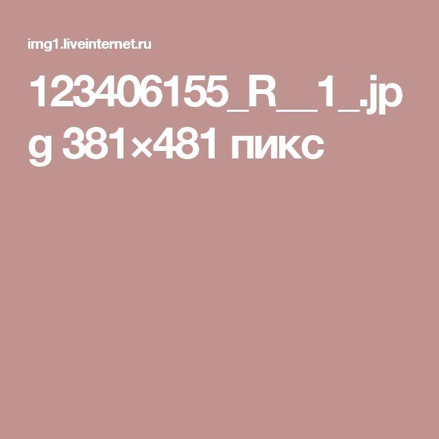 123406155_R__1_.jpg 381×481 пикс