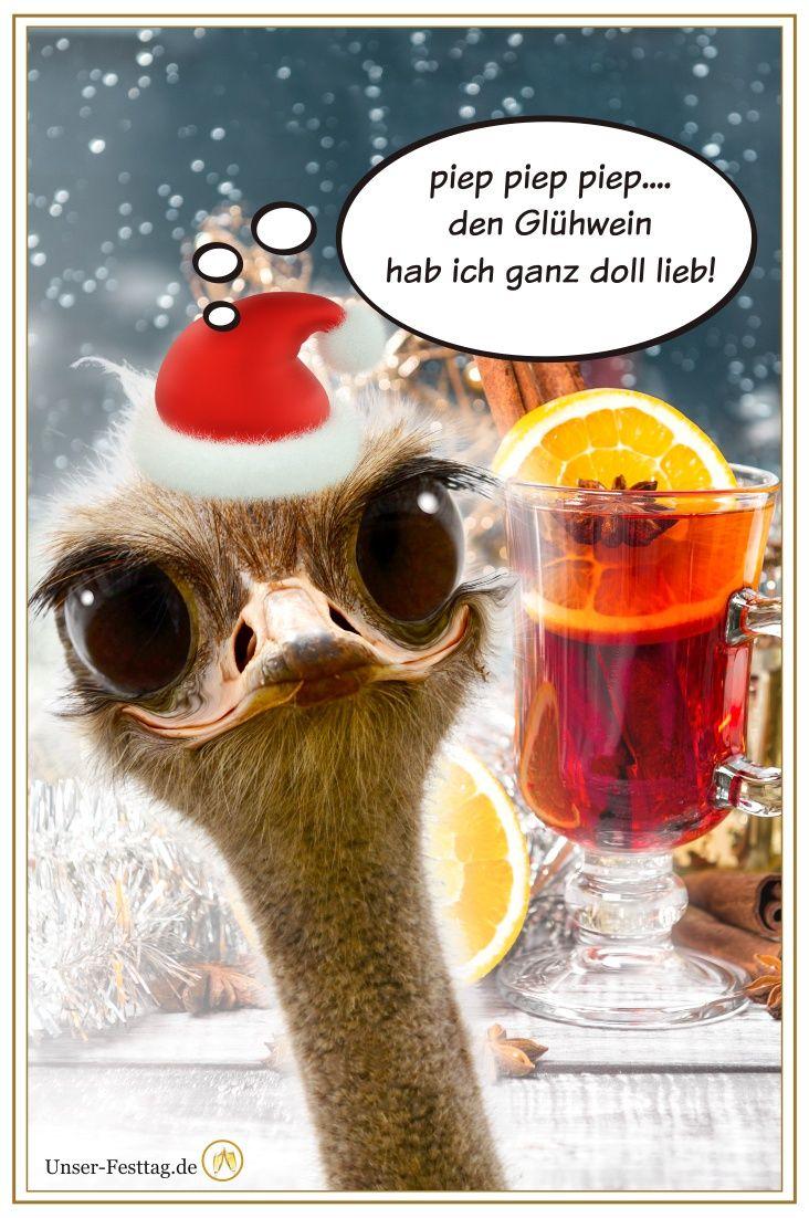 Whatsapp Bilder Weihnachten Lustig