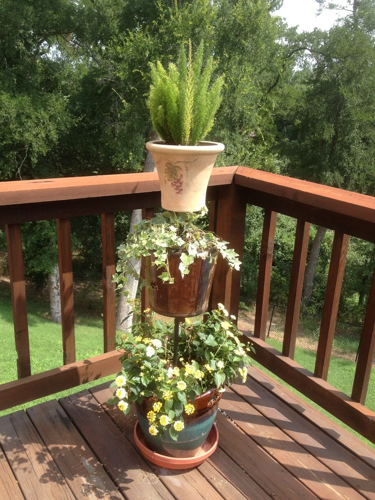 17 Best images about Topiary Plant Stand Ideas! on ... on Amazing Plant Stand Ideas  id=66358