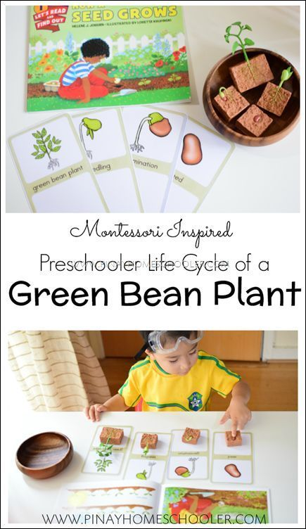 269 best Gardening with Kids images on Pinterest