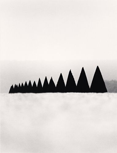 "MICHAEL KENNA, CONICAL HEDGES VERSAILLES FRANCE 1988: gives ""grey gardens"" a different meaning entirely."