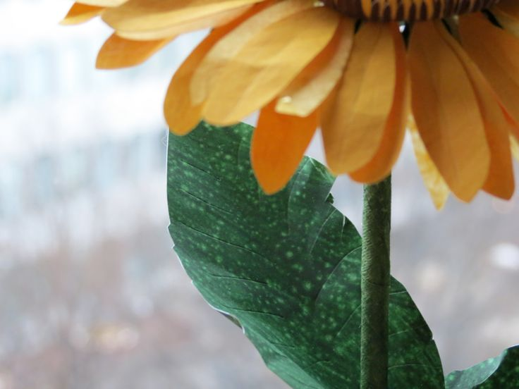 Still raining, winter lingers on, but our sunflowers bring you summer all year long. Totally hand-painted, leaves are decorated with acrylic diluted painting  - Piove e l'inverno non vuole andarsene, ma il nostro girasole dice estate, tutto l'anno. Tutto dipinto a mano, le foglie sono decorate con vernice acrilica diluita - #paper #flowers #flower #paperflowers #sunflower #sunflowers #handcraft