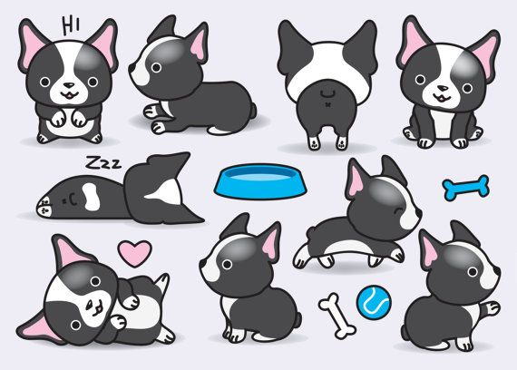 Premium Vector Clipart Kawaii Boston por LookLookPrettyPaper