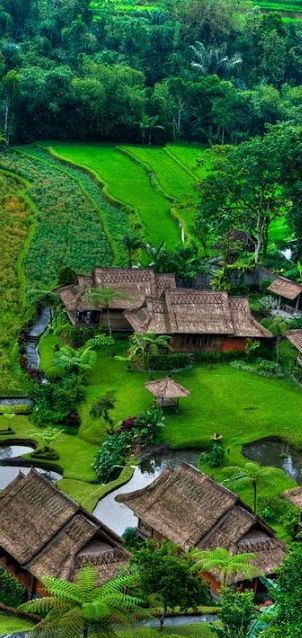 The serenity of Bali, Indonesia.