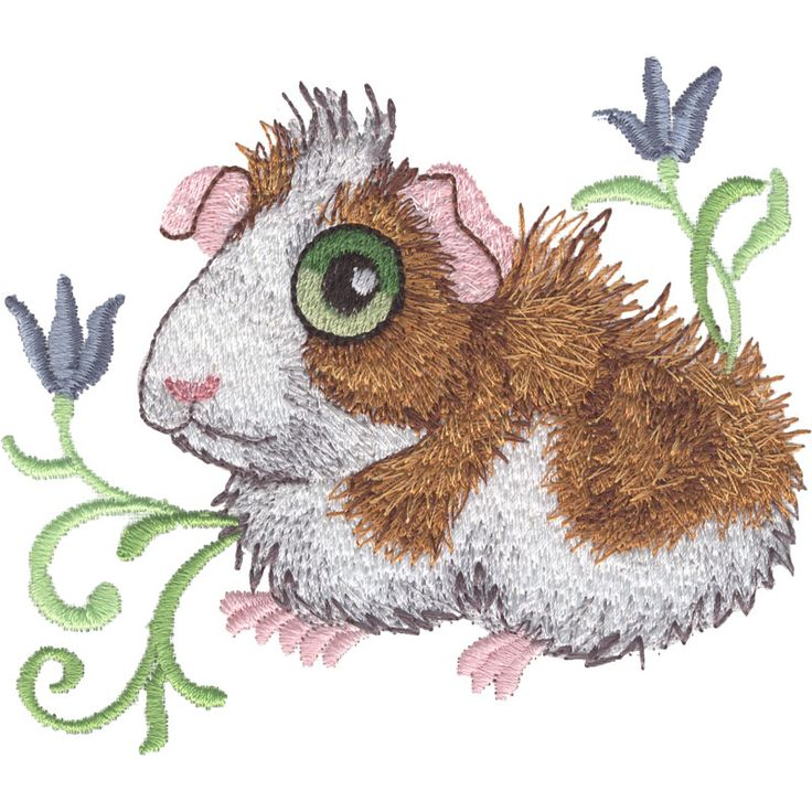 Guinea pig machine embroidery designs pinterest