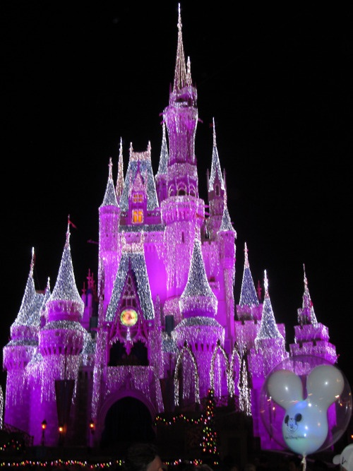 How is it that I have never seen the castle like this before???? Truly magical!!!Beautiful Fun, Cinderella Castles, The Colors Purple, Purple Passion, Magic Castles, Lavender Colors, Purple Castles