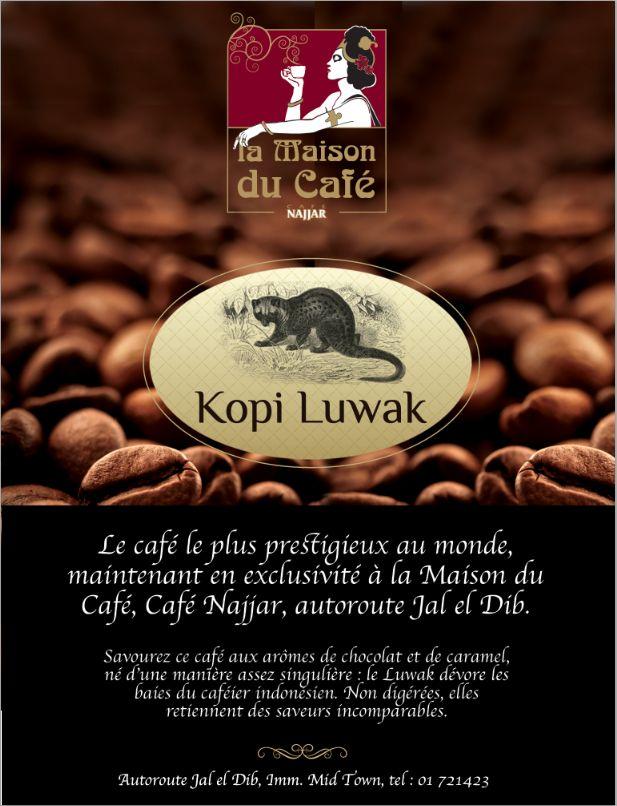 Kopi Luwak - La Maison du Café