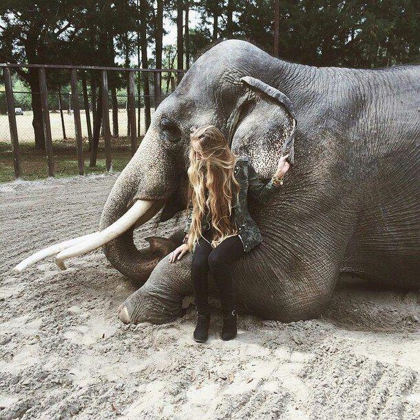 Το e - περιοδικό μας: Άνθρωποι και Ελέφαντες...
