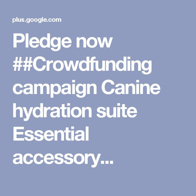 Pledge Now ##Crowdfunding Campaign Canine Hydration Suite
