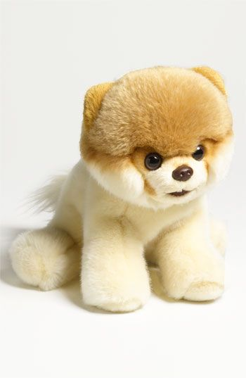 'Boo - World's Cutest Dog' Stuffed Animal