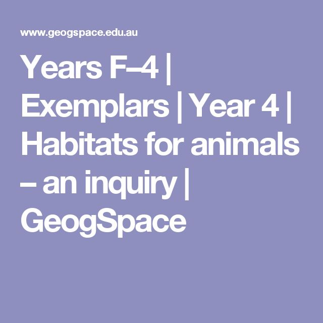 Years F–4   Exemplars   Year 4   Habitats for animals – an inquiry   GeogSpace