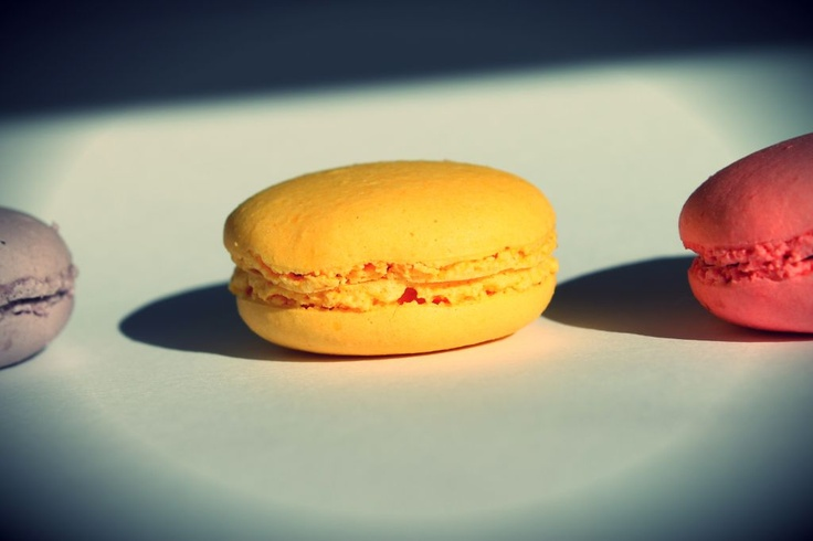 Macarons in the sunshine by mymacaronrecipe.com