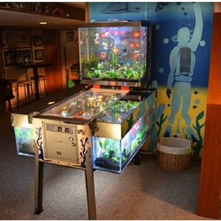 All right you can have a game room. but only if they all look like this! ... fish tank