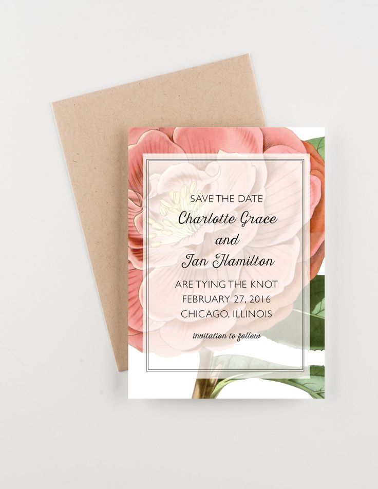 Pink Camellia Save The Date Vintage Botanical