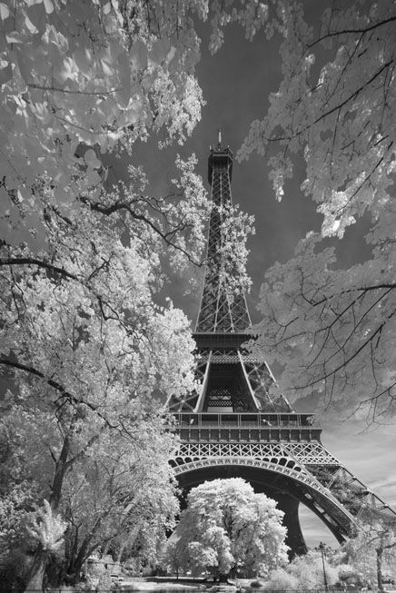 A great photo of my favorite place in the world. When people take photos of the Eiffel Tower they all take it from the same angle. The angle that this person used along with variety in textures makes the photo unique.