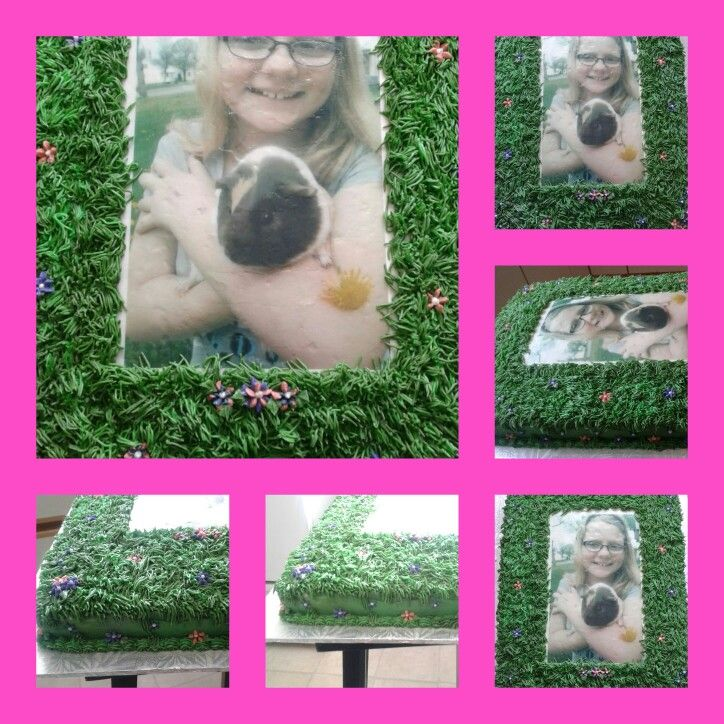 Photo cake for my daughter's 11 birthday....with her guinipig arie