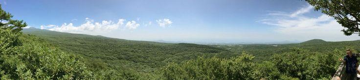 Seogwipo recreational forest 1