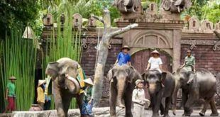 "Bali Safari Marine Park: ""Packages & Prices Online Booking"""