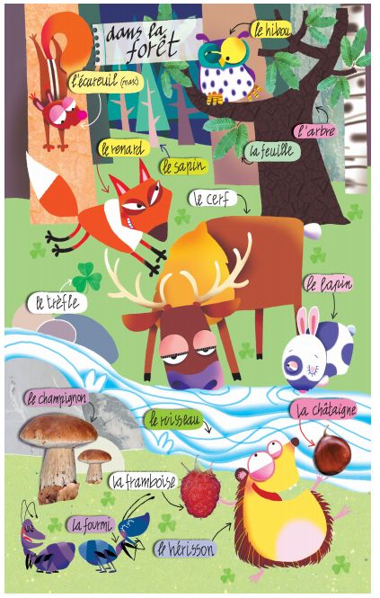 La Forêt. http://www.collinslanguage.com/media/resources/first-time/french/vocabulary.pdf