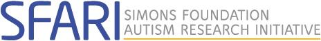 Visual Perception Enhanced in Autism
