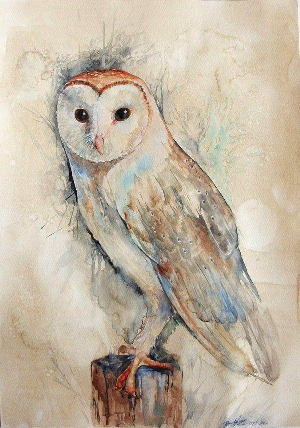 Barn Owl by Zorionart.deviantart.com on @deviantART