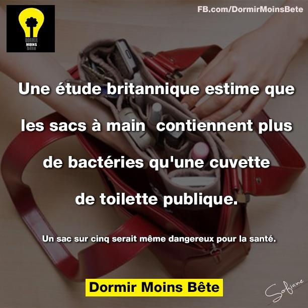 Une étude britannique estime que les sacs à main contiennent plus de bactérie qu'une cuvette de toilette publique.