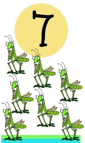 * Insecten! 7-10