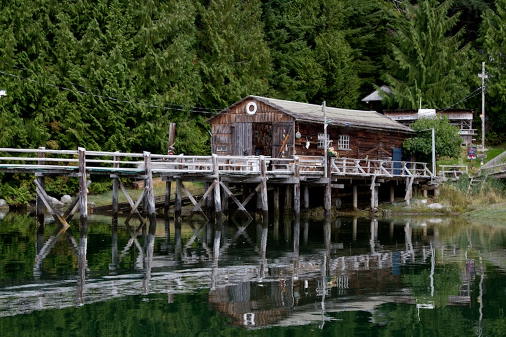 We stopped for a break on the return leg to Telegraph Cove.