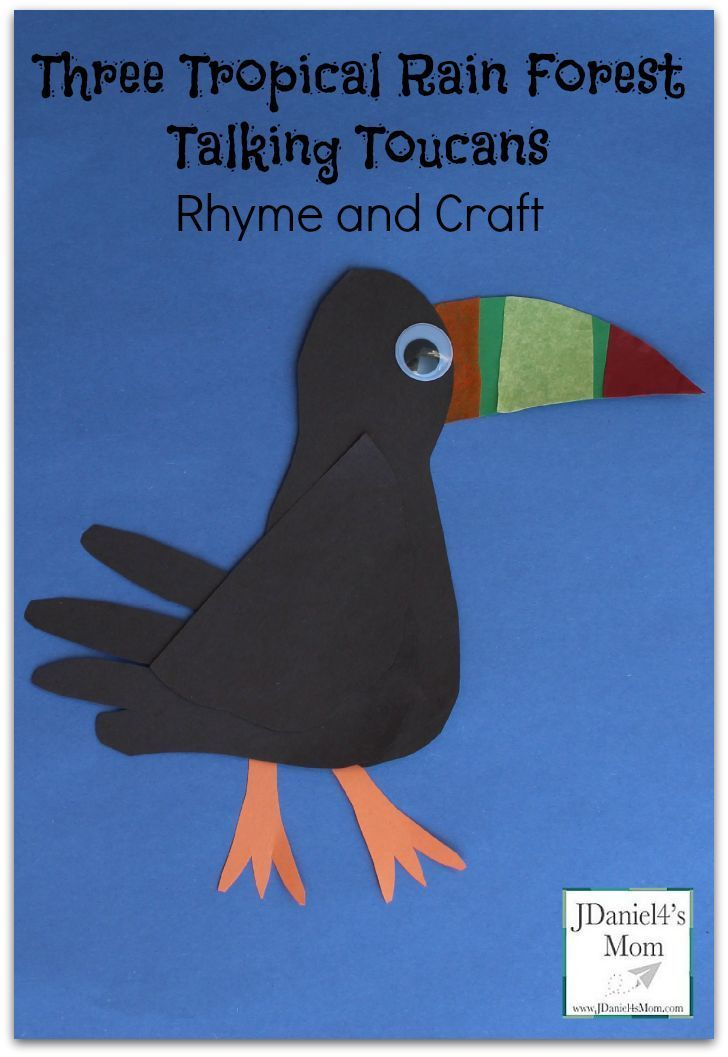 Three Tropical Rain Forest Talking Toucans Rhyme and Craft - List of Toucan Themed Books Shared
