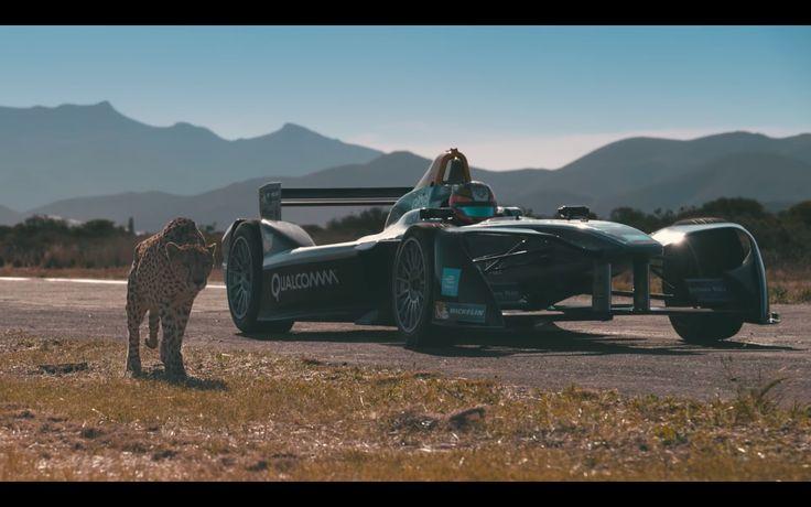 Drag Race: Kan en gepard sprinte fra en Formula E - http://bit.ly/2ArrZAG