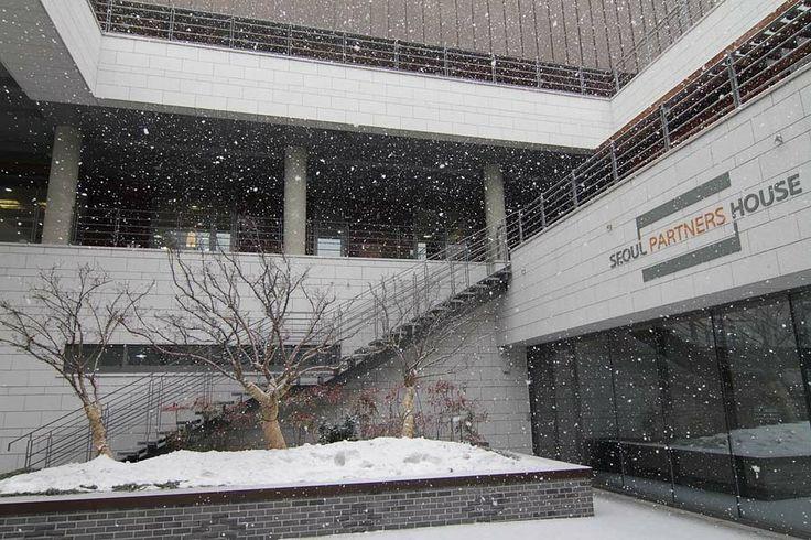 * 눈이 펑펑 쏟아지는 날 서울파트너스하우스의 진풍경