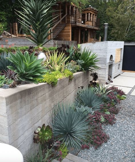5 Drought-Tolerant Landscaping Ideas for a Modern Low-Water Garden Read more: http://freshome.com/drought-tolerant-landscaping-ideas/#ixzz43ZUKqyNc