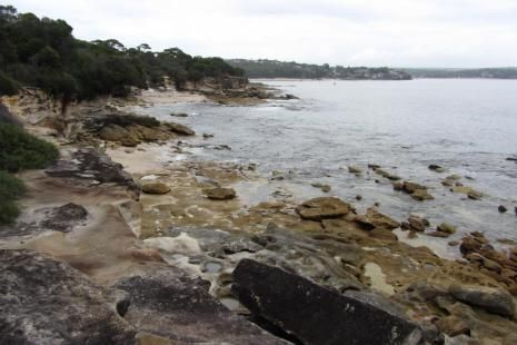 Sydney Coast Walks nature tours - Marley walking tour Royal National Park, Sydney, Australia - Check our review http://greencitytrips.com/royal-national-park-sydney-coast-walks/