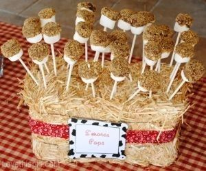 Baby shower pops for country or barn yard theme shower