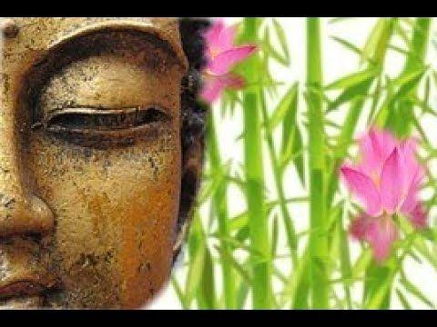 Suoni della Natura, Campane Tibetane e Frequenze per Incanalare Energie ...