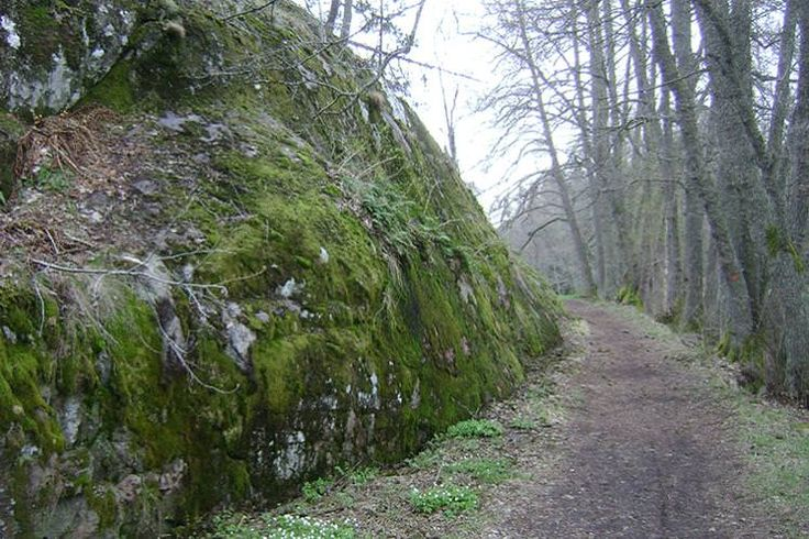 A track leading deep into the forest of Tyresta National Park. Image from Wikimedia Commons.